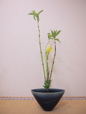 1shinpuu